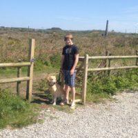 dog-walk-gate